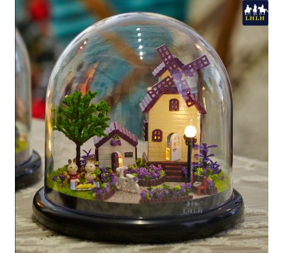 DIY Transparent Cover Music Box Gift Provence